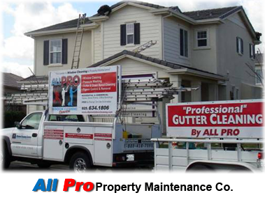 All Pro Window Cleaning Service - Gutter Cleaning - Gutter ...